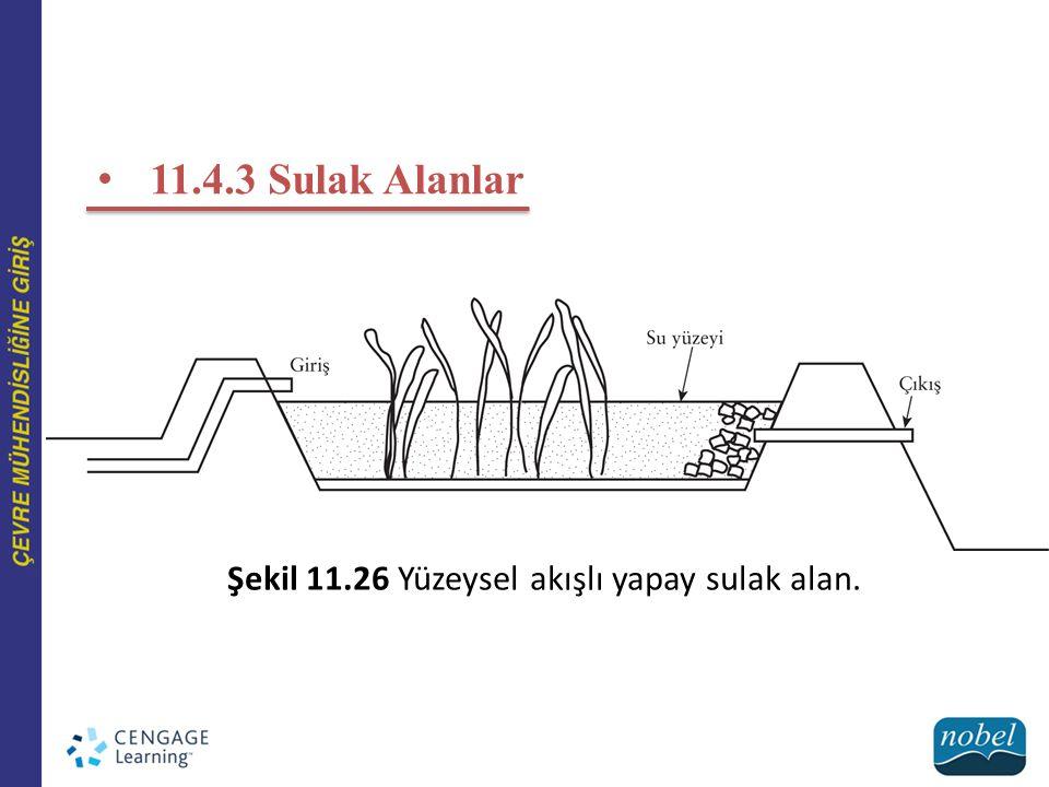 11.4.3 Sulak Alanlar Şekil 11.26 Yüzeysel akışlı yapay sulak alan.