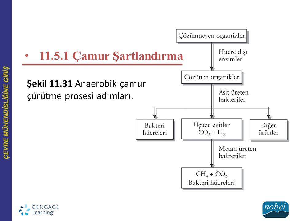 Şekil 11.31 Anaerobik çamur çürütme prosesi adımları.
