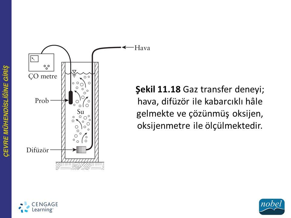 Şekil 11.18 Gaz transfer deneyi; hava, difüzör ile kabarcıklı hâle gelmekte ve çözünmüş oksijen, oksijenmetre ile ölçülmektedir.