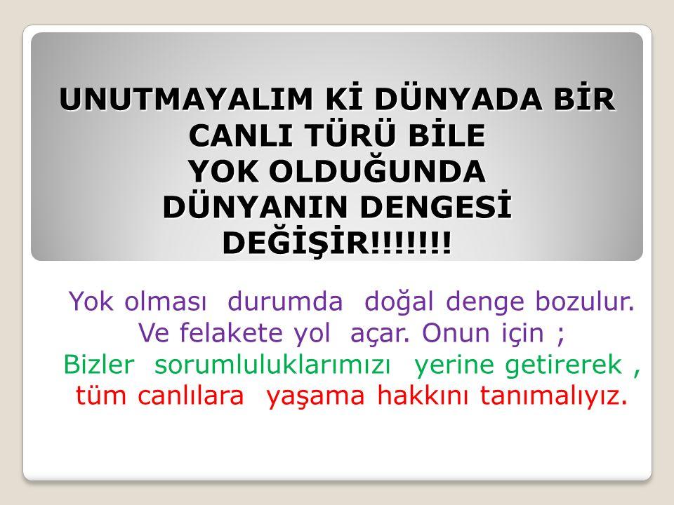 UNUTMAYALIM Kİ DÜNYADA BİR CANLI TÜRÜ BİLE YOK OLDUĞUNDA DÜNYANIN DENGESİ DEĞİŞİR!!!!!!!