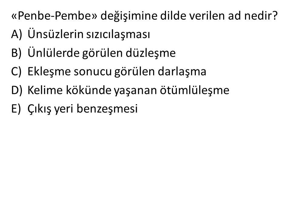 «Penbe-Pembe» değişimine dilde verilen ad nedir