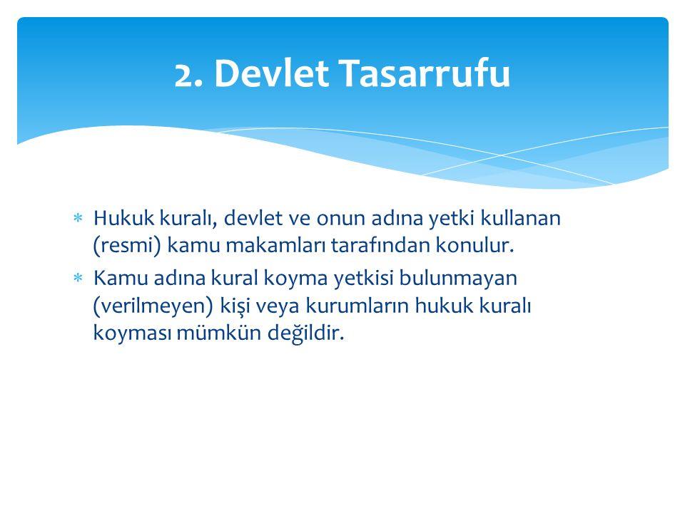 2. Devlet Tasarrufu Hukuk kuralı, devlet ve onun adına yetki kullanan (resmi) kamu makamları tarafından konulur.