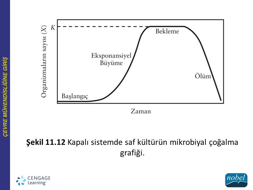 Şekil 11.12 Kapalı sistemde saf kültürün mikrobiyal çoğalma grafiği.