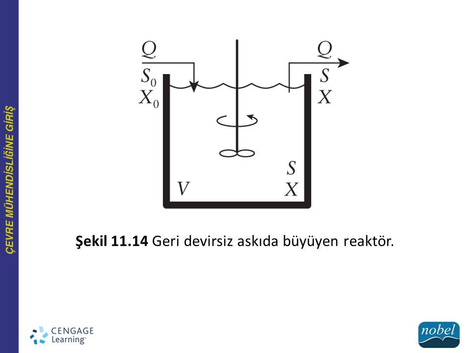 Şekil 11.14 Geri devirsiz askıda büyüyen reaktör.