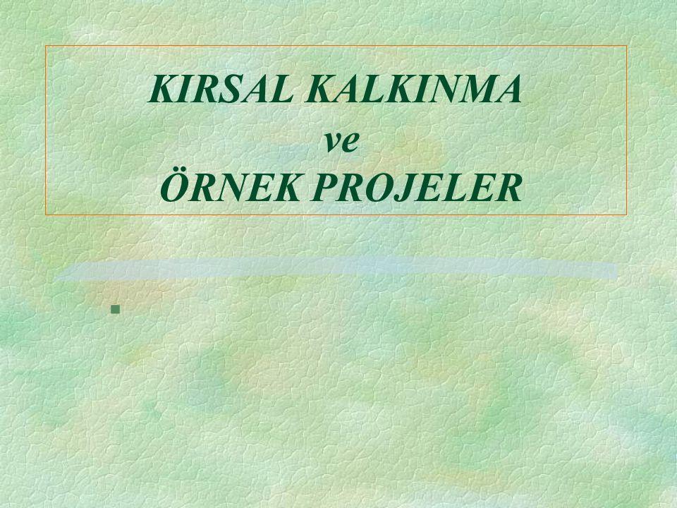 KIRSAL KALKINMA ve ÖRNEK PROJELER