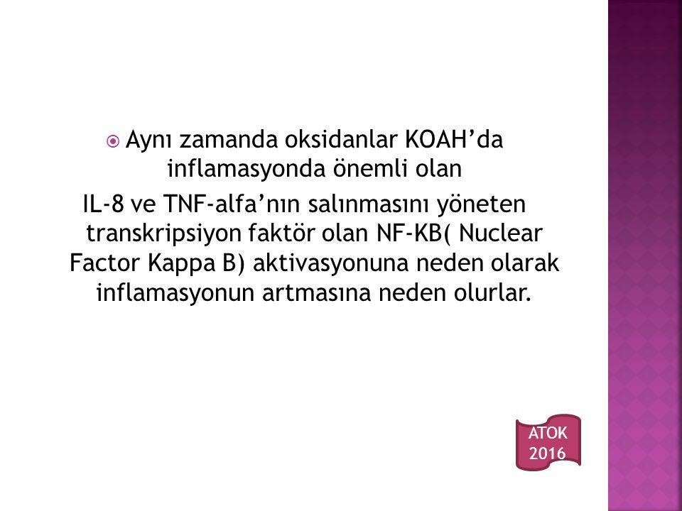 Aynı zamanda oksidanlar KOAH'da inflamasyonda önemli olan