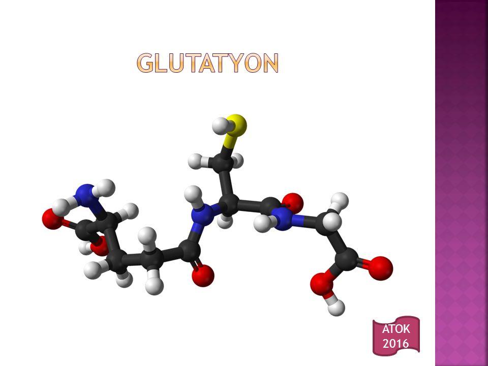 GLUTATYON ATOK 2016