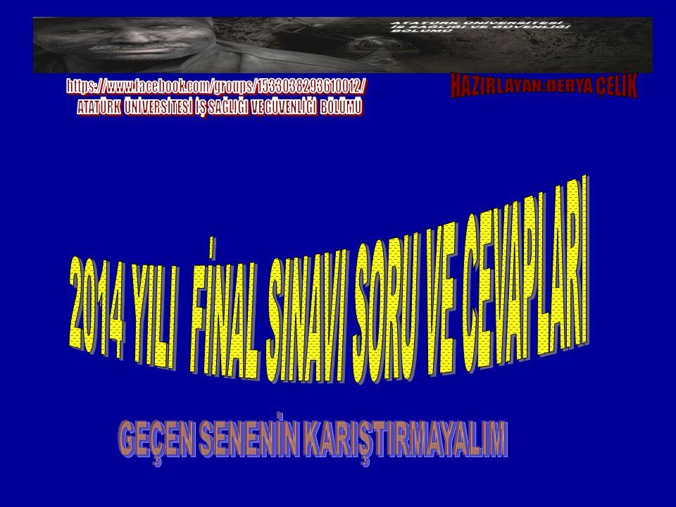 2014 YILI FİNAL SINAVI SORU VE CEVAPLARI