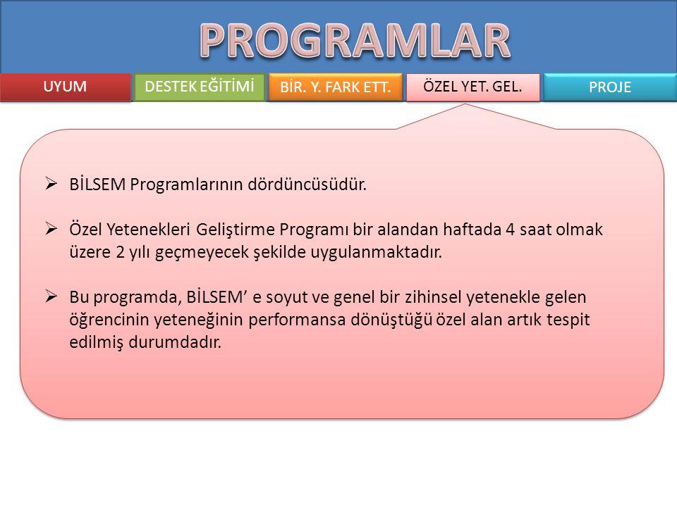 PROGRAMLAR BİLSEM Programlarının dördüncüsüdür.