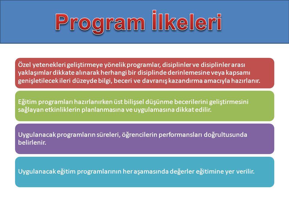 Program İlkeleri