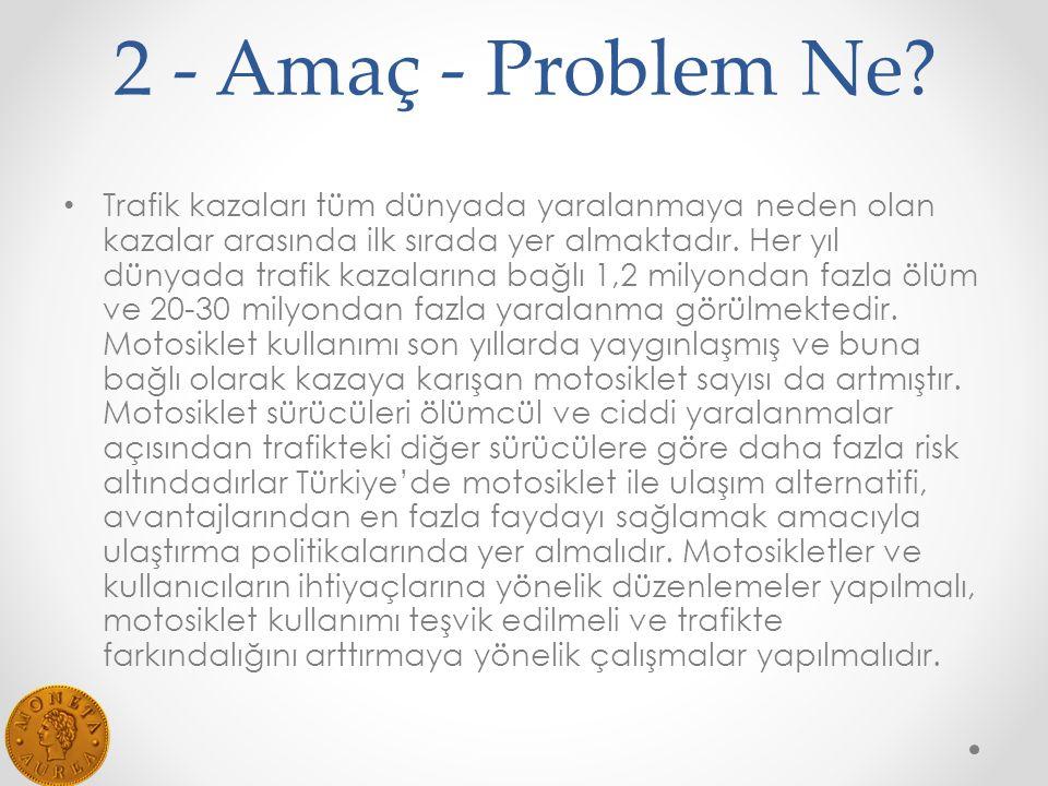 2 - Amaç - Problem Ne
