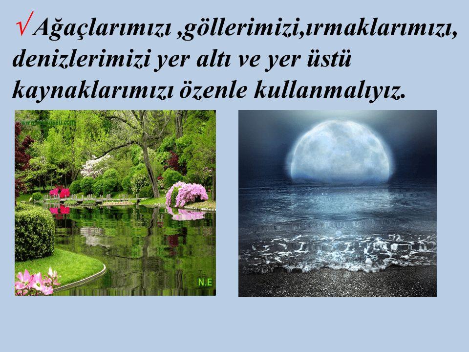 √ Ağaçlarımızı ,göllerimizi,ırmaklarımızı, denizlerimizi yer altı ve yer üstü kaynaklarımızı özenle kullanmalıyız.