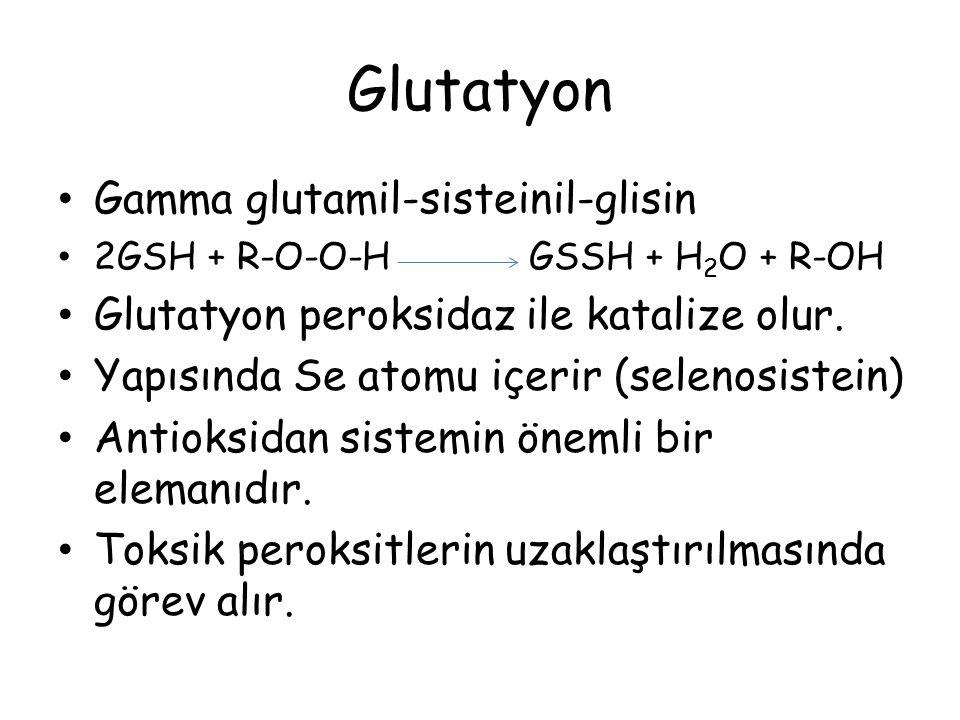 Glutatyon Gamma glutamil-sisteinil-glisin