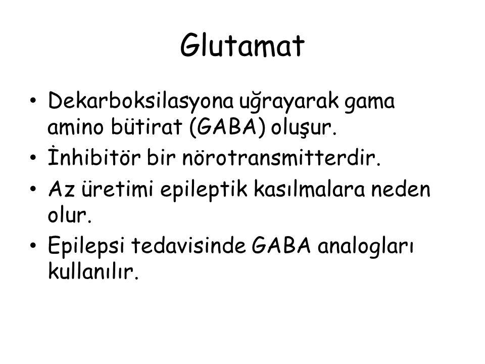 Glutamat Dekarboksilasyona uğrayarak gama amino bütirat (GABA) oluşur.