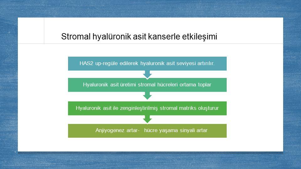 Stromal hyalüronik asit kanserle etkileşimi