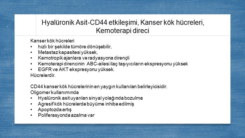 Hyalüronik Asit-CD44 etkileşimi, Kanser kök hücreleri,