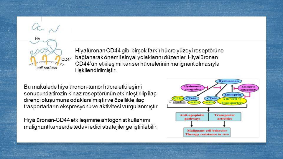Hiyalüronan CD44 gibi birçok farklı hücre yüzeyi reseptörüne bağlanarak önemli sinyal yolaklarını düzenler. Hiyalüronan CD44'ün etkileşimi kanser hücrelerinin malignant olmasıyla ilişkilendirilmiştir.