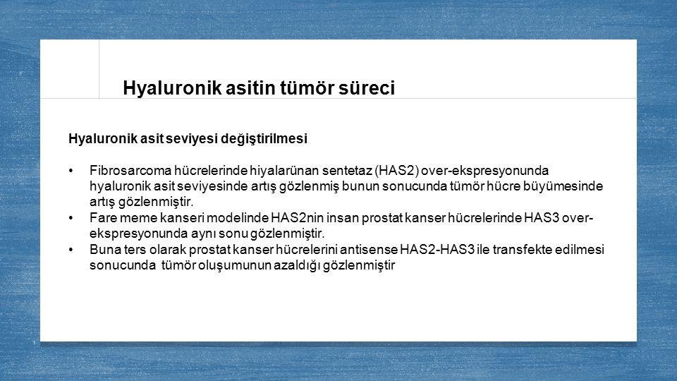 Hyaluronik asitin tümör süreci
