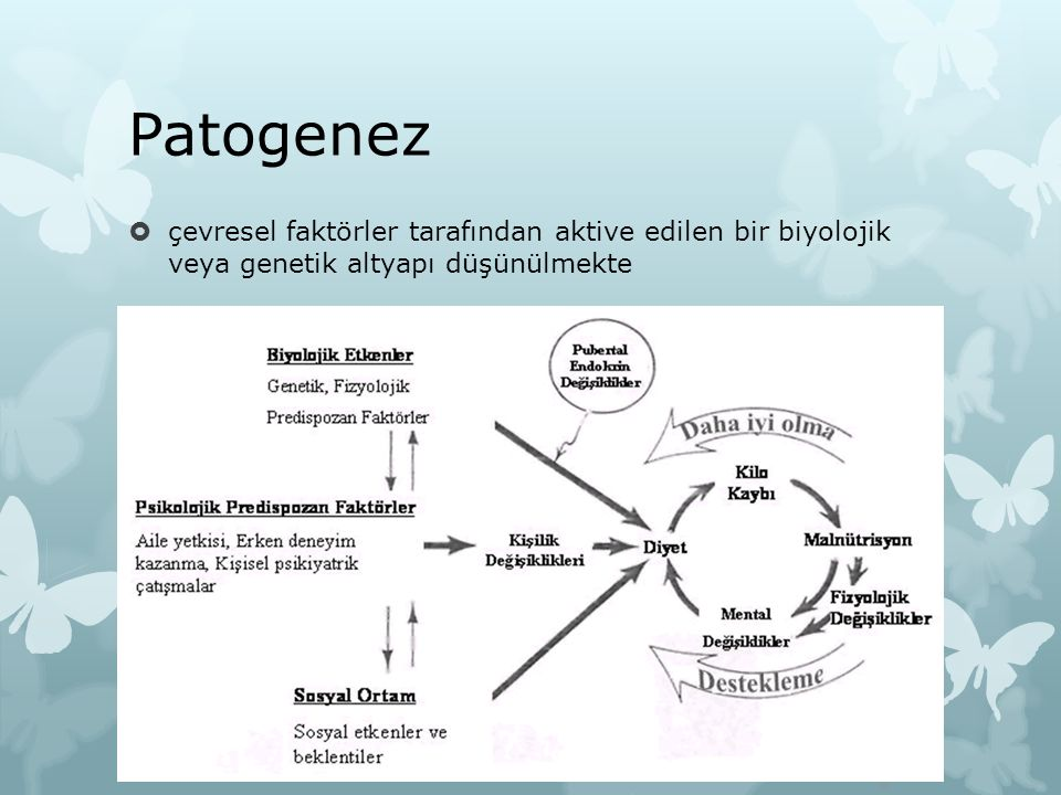 Patogenez çevresel faktörler tarafından aktive edilen bir biyolojik veya genetik altyapı düşünülmekte.