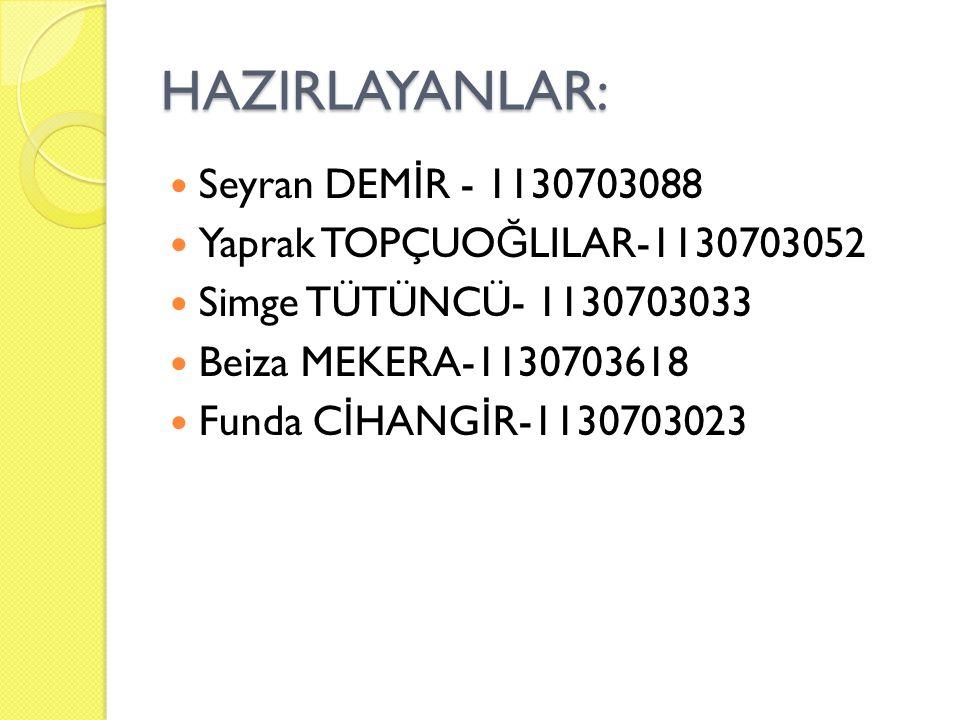 HAZIRLAYANLAR: Seyran DEMİR - 1130703088