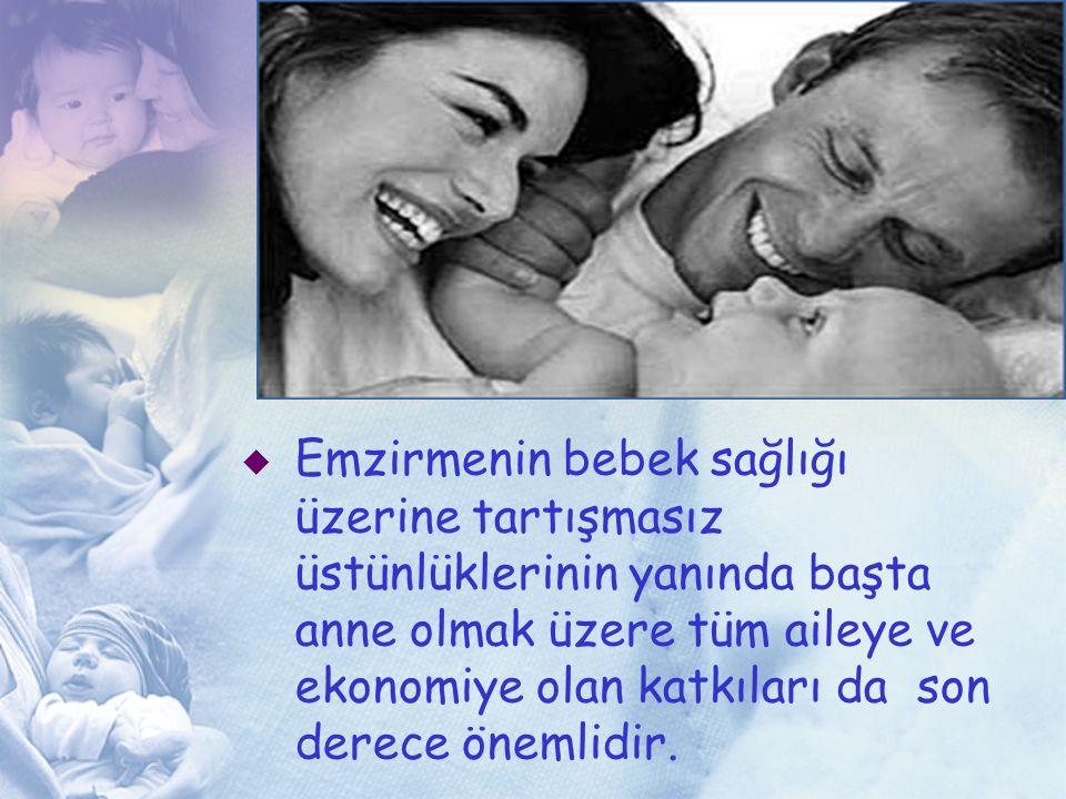 Emzirmenin bebek sağlığı üzerine tartışmasız üstünlüklerinin yanında başta anne olmak üzere tüm aileye ve ekonomiye olan katkıları da son derece önemlidir.