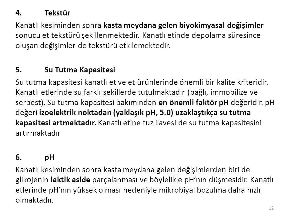 4. Tekstür