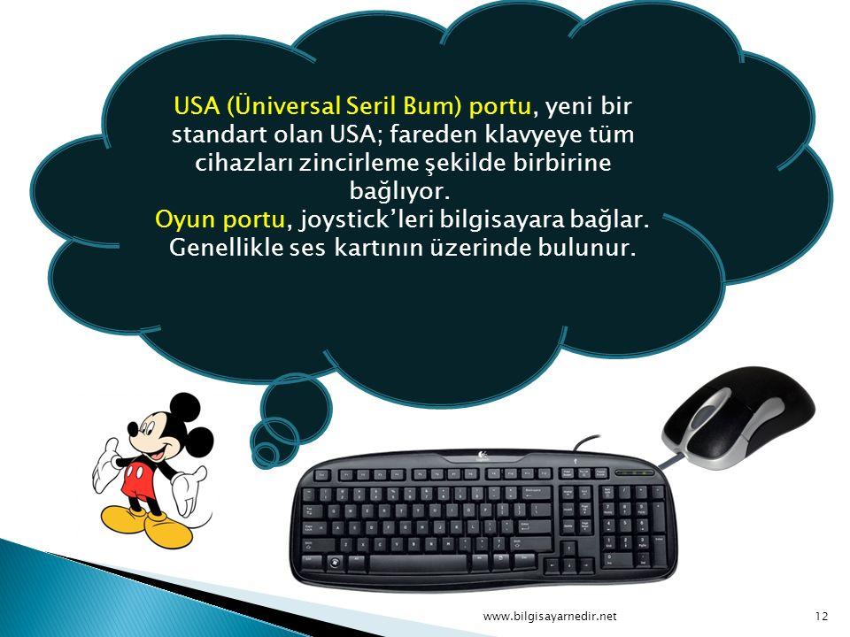USA (Üniversal Seril Bum) portu, yeni bir standart olan USA; fareden klavyeye tüm cihazları zincirleme şekilde birbirine bağlıyor. Oyun portu, joystick'leri bilgisayara bağlar. Genellikle ses kartının üzerinde bulunur.