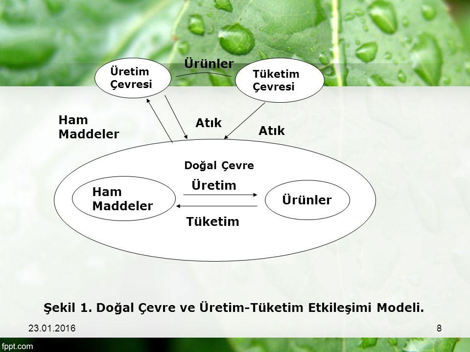 Şekil 1. Doğal Çevre ve Üretim-Tüketim Etkileşimi Modeli.