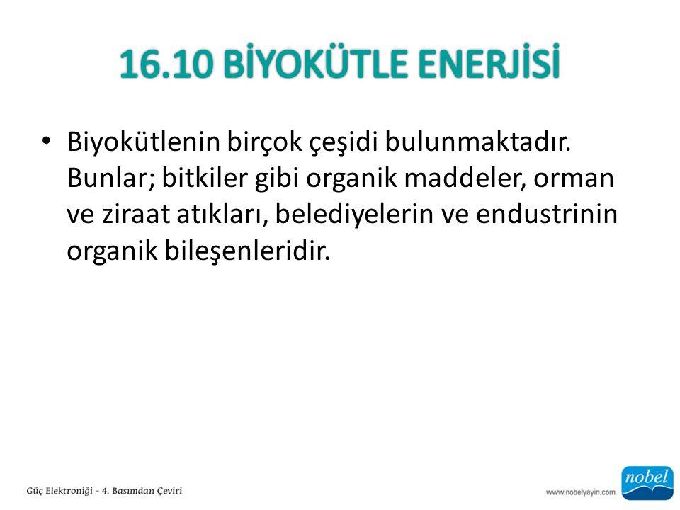 16.10 Bİyokütle EnerJİSİ