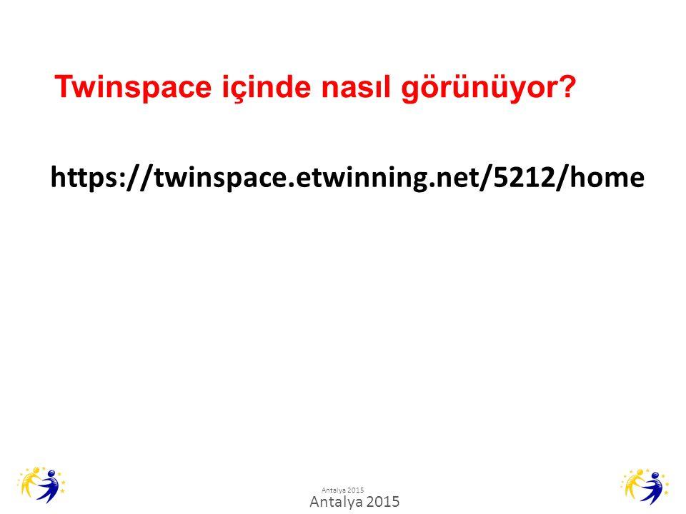Twinspace içinde nasıl görünüyor