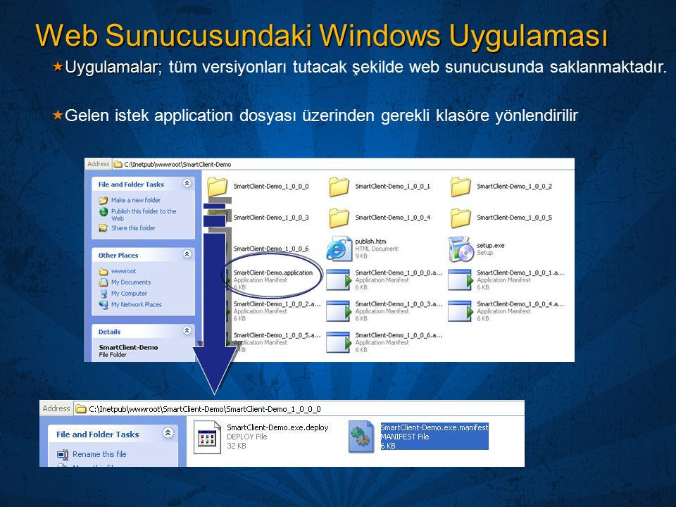 Web Sunucusundaki Windows Uygulaması
