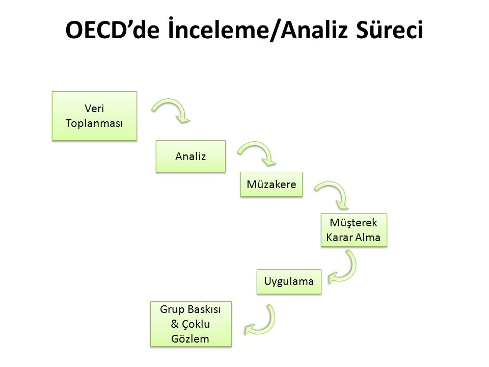 OECD'de İnceleme/Analiz Süreci
