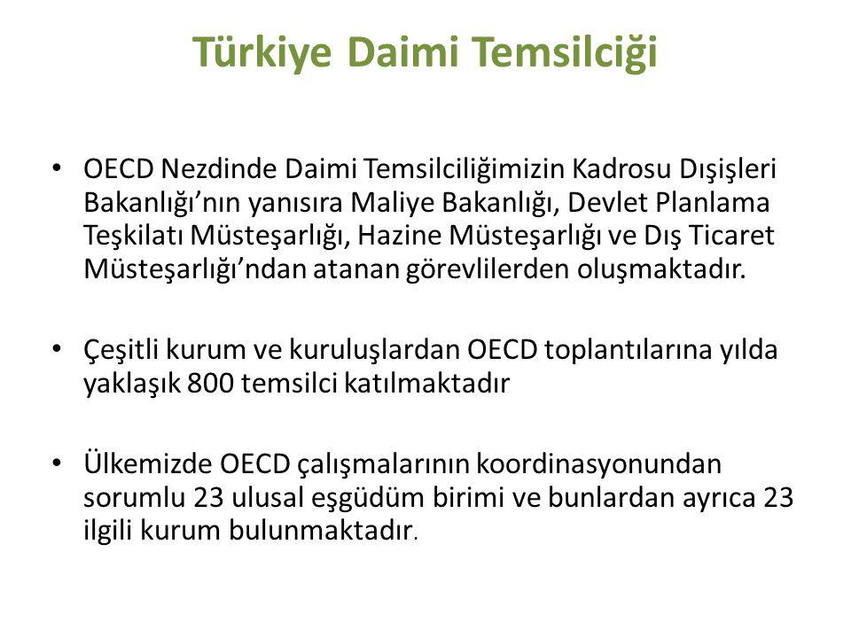 Türkiye Daimi Temsilciği