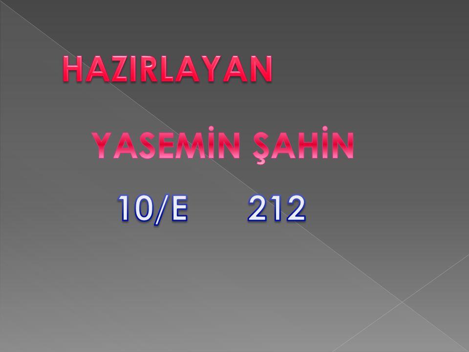 HAZIRLAYAN YASEMİN ŞAHİN 10/E 212