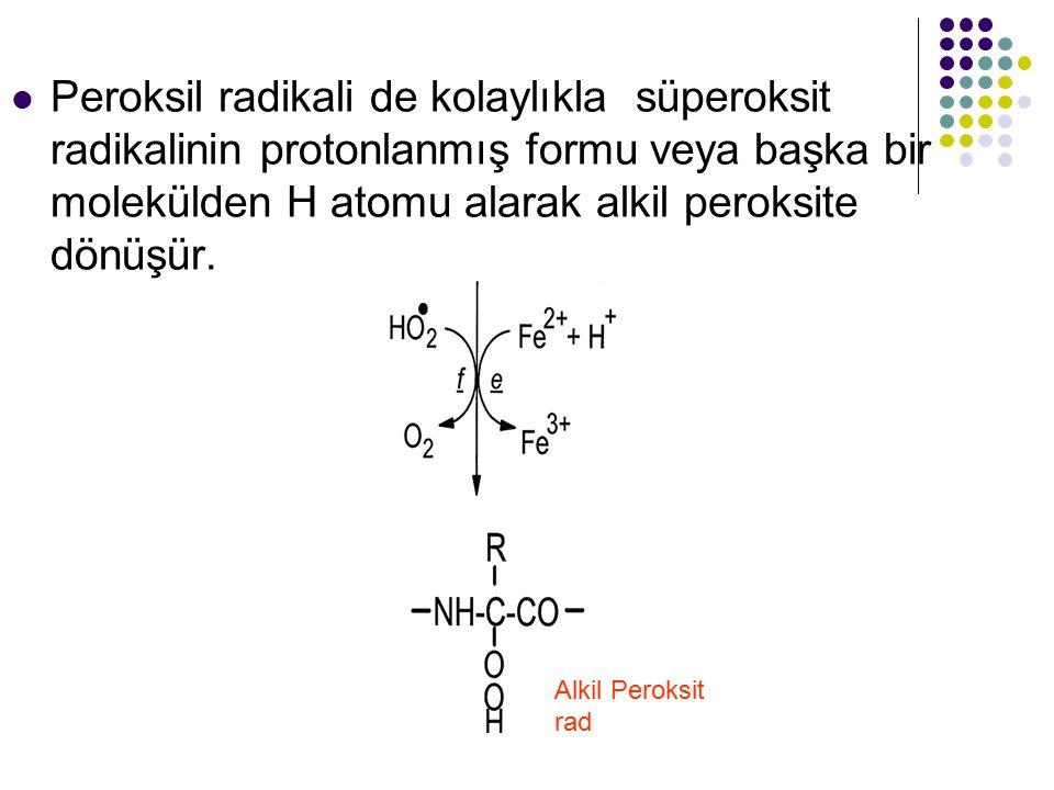 Peroksil radikali de kolaylıkla süperoksit radikalinin protonlanmış formu veya başka bir molekülden H atomu alarak alkil peroksite dönüşür.