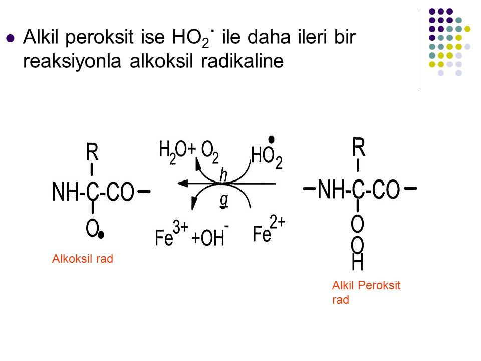 Alkil peroksit ise HO2˙ ile daha ileri bir reaksiyonla alkoksil radikaline