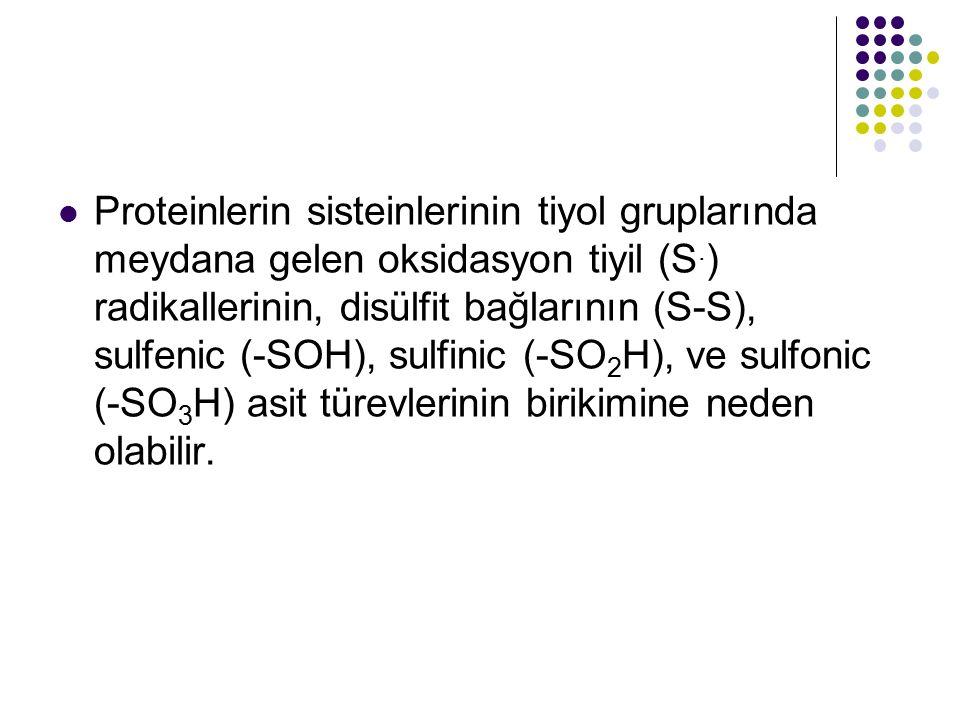 Proteinlerin sisteinlerinin tiyol gruplarında meydana gelen oksidasyon tiyil (S.) radikallerinin, disülfit bağlarının (S-S), sulfenic (-SOH), sulfinic (-SO2H), ve sulfonic (-SO3H) asit türevlerinin birikimine neden olabilir.