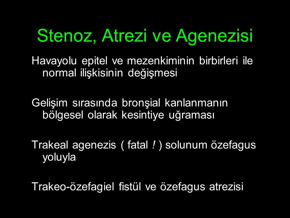 Stenoz, Atrezi ve Agenezisi