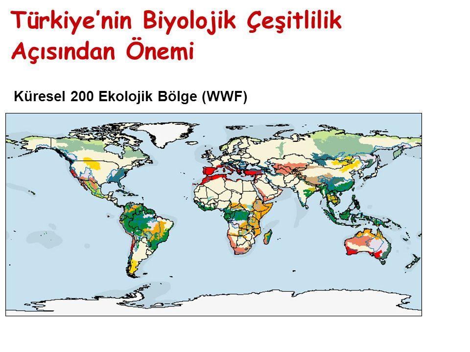 Türkiye'nin Biyolojik Çeşitlilik Açısından Önemi