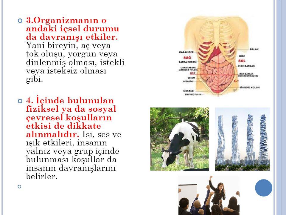 3. Organizmanın o andaki içsel durumu da davranışı etkiler