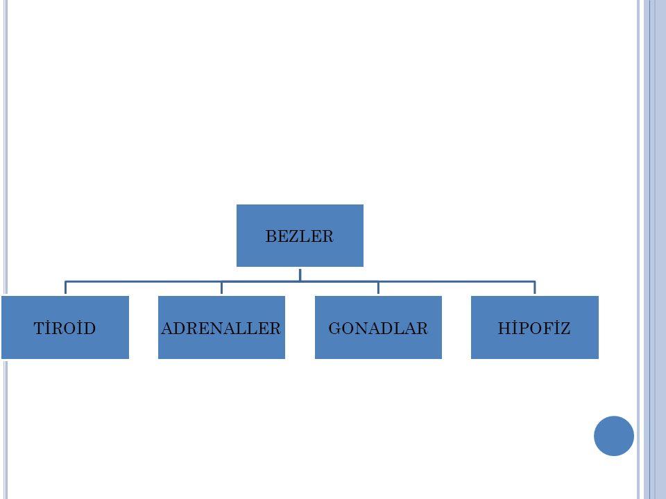 BEZLER TİROİD ADRENALLER GONADLAR HİPOFİZ