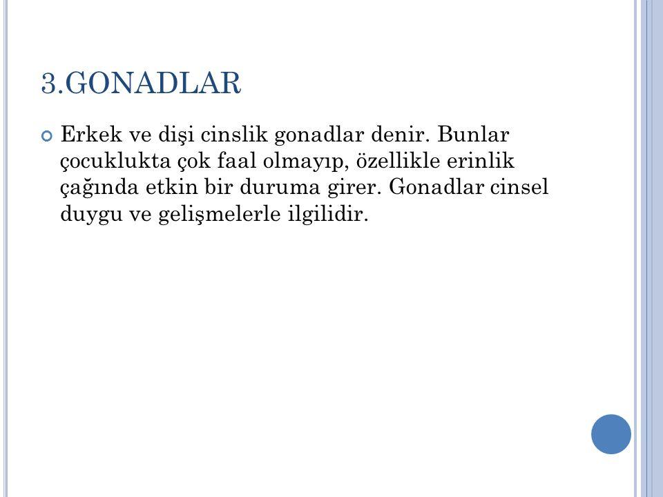 3.GONADLAR