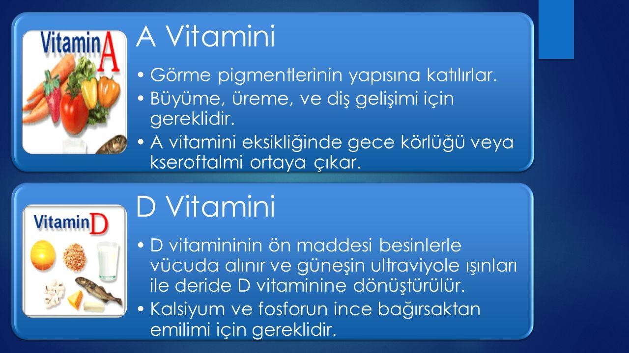 A Vitamini D Vitamini Görme pigmentlerinin yapısına katılırlar.