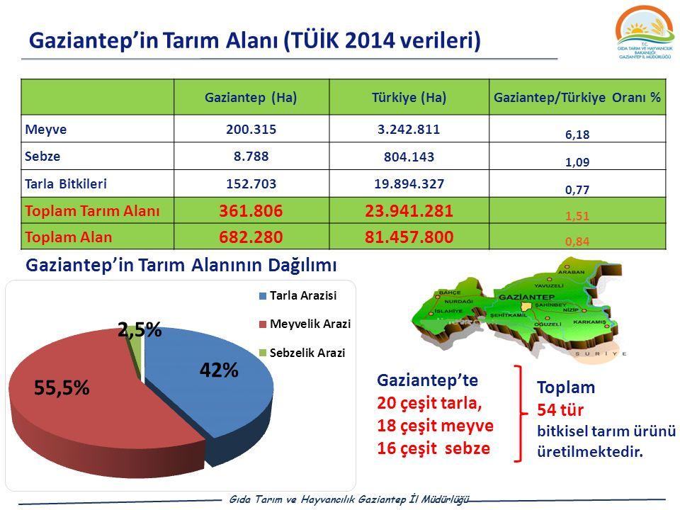 Gaziantep/Türkiye Oranı %