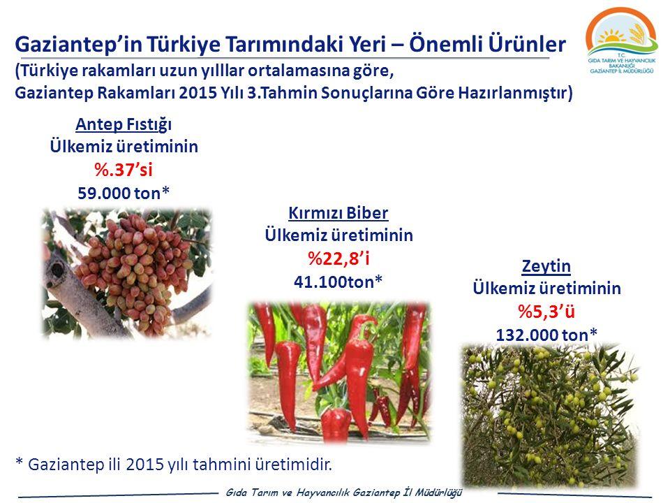 Ülkemiz üretiminin %.37'si