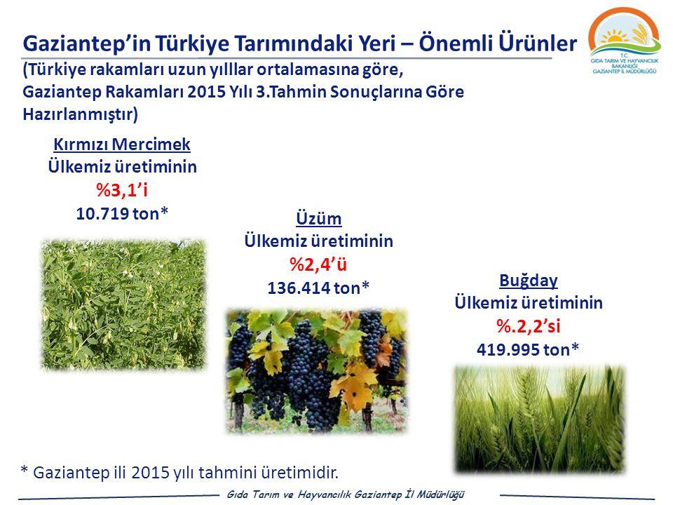 Gaziantep'in Türkiye Tarımındaki Yeri – Önemli Ürünler