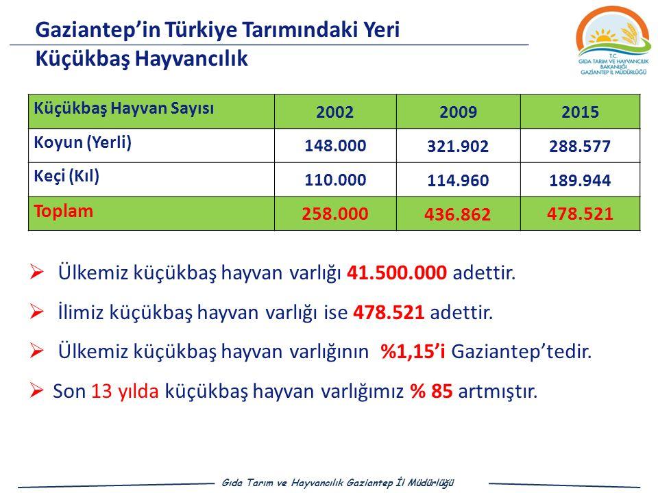 Gaziantep'in Türkiye Tarımındaki Yeri Küçükbaş Hayvancılık
