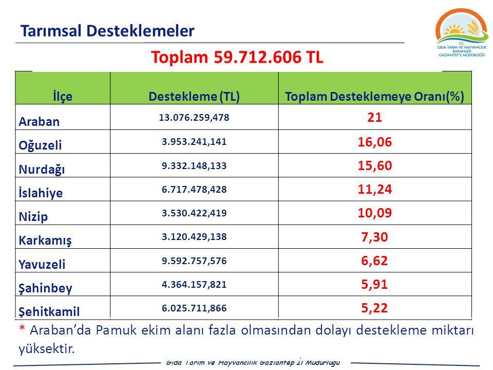 Toplam Desteklemeye Oranı(%)