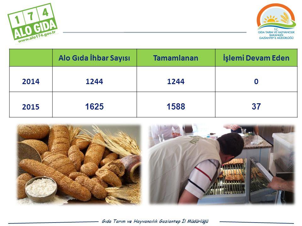 Alo Gıda İhbar Sayısı Tamamlanan İşlemi Devam Eden 2014 1244 2015 1625
