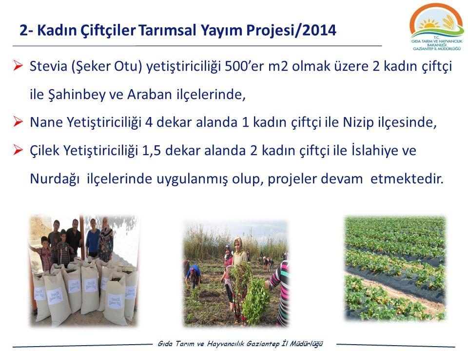 2- Kadın Çiftçiler Tarımsal Yayım Projesi/2014